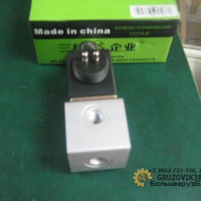 Клапан электромагнитный (2 контакт) WG9719710004