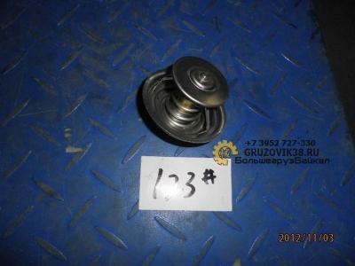Термостат  WP-10 (S)  (79 °C) 61800060172